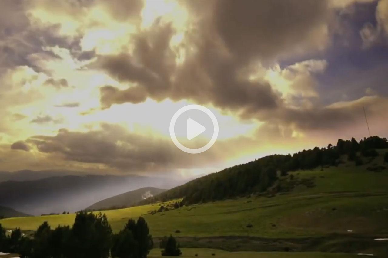 #quedatacasa - Naturlandia